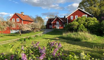 Eget pensionat på Färingsö