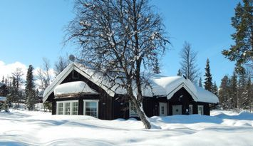 Spacious cottage in Funäsdalen