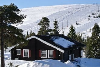 Cottage in Sälen/Högfjället