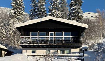 Modern villa 12 personer gångavstånd till Åre By