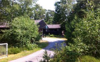 Höllviken Falsterbo Cottage Sweden - bird watching