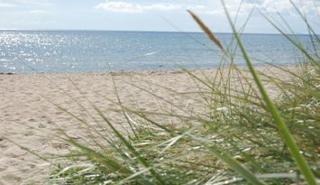 Golfparadise & 80 m to Swedens longest beach