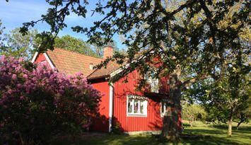 Mysigt hus på landet med stor trädgård