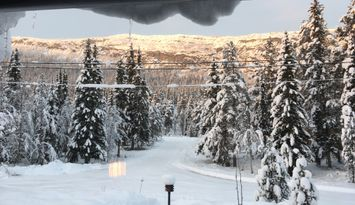 Stuga i Funäsdalen