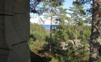 Idylliskt, enskilt naturskönt läge vid Vänern!