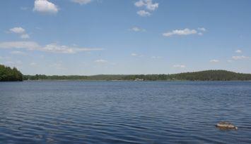 Stuga med bastu, båt 50 m till sjön