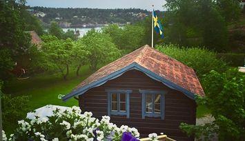 Vackert Härbre på Ingarö Stockholms skärgård