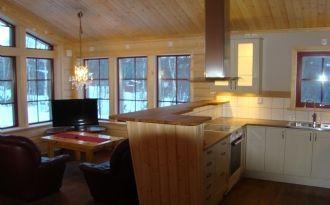 TÄNNDALEN New mountain cabin spacious, homely