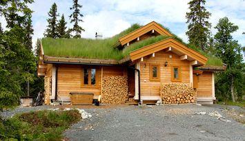 Cozy, newbuilt cottage in Grövelsjöfjällen