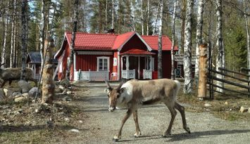 Mysig stuga Röjan, Klövsjö, Vemdalen