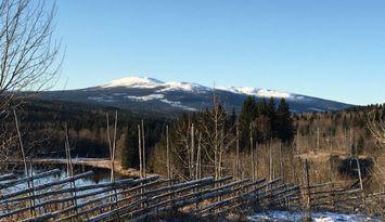 Fin mysig stuga nära Åre
