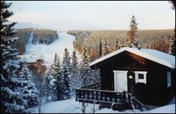 House for rent in Bydalen- SWEDEN