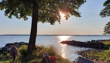 Lantgård vid sjön Bolmen på ön Bolmsö.
