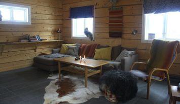 Timber cottage near the mountain in Torkilstöten Ljungdalen