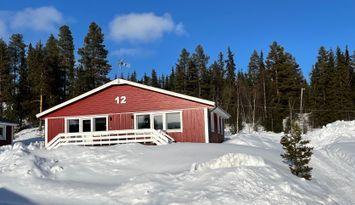 Fjällstuga med ski in Ammarnäs
