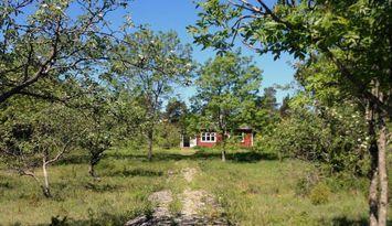 Lugnt naturskönt i Rute, nära Furillen och Fårö