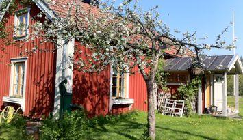 Sommaridyll i 1700-talshus i Roslagen