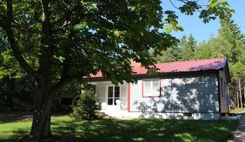Newly renovated cottage in lush forest glade!
